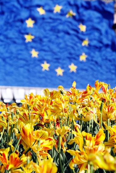 Європейський Союз перерахував Україні 19 млн. євро на підтримку екології та управліннякордоном