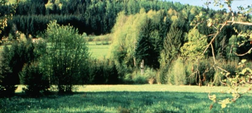 Заповідні території: як зробити природу ближчою долюдей?