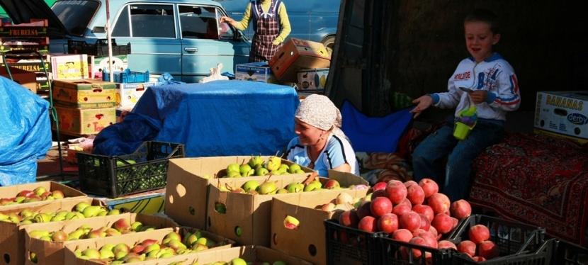 Ліпша безпека харчів сприятиме українському експорту доЄС