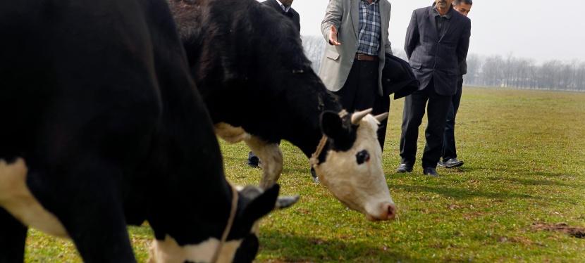 ЄС допоможе створити ринок сільгоспземель вУкраїні