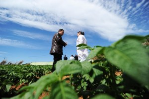 ENPI ALGERIA AGRICULTURE