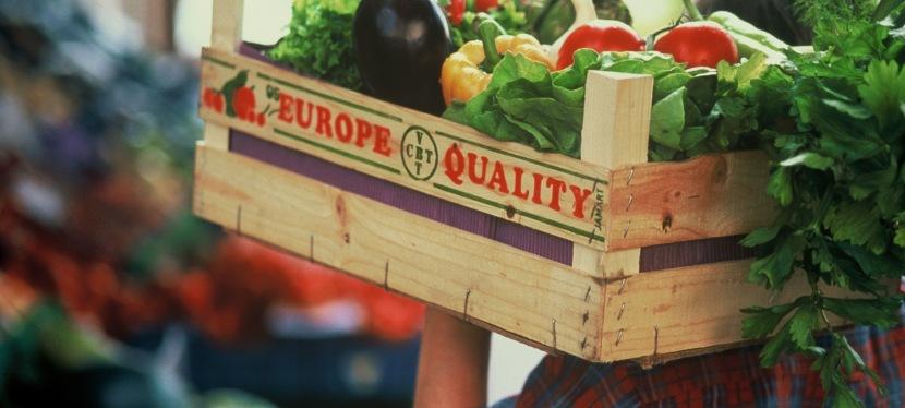 Дешевші добрива та імпортні фрукти: що може змінити дерегуляція бізнесу вагросекторі