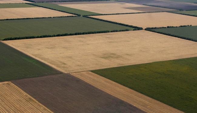 Завершився проект Твіннінг з удосконалення ринку землі вУкраїні