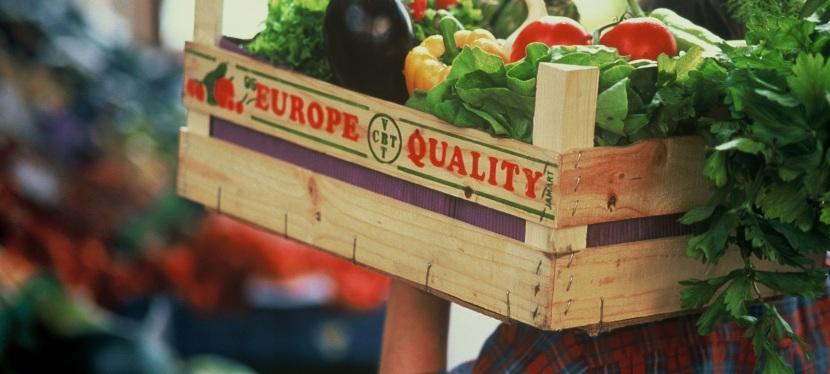 Віл та Добідовська: Безпечність харчових продуктів — в рукахпідприємців