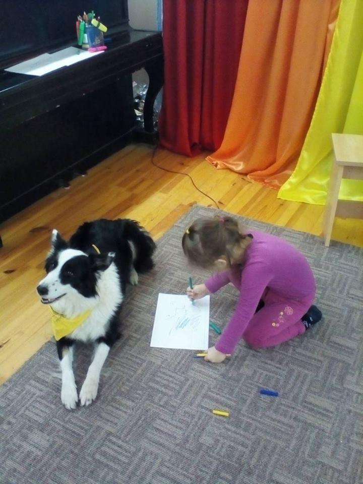 Собаки1.jpg