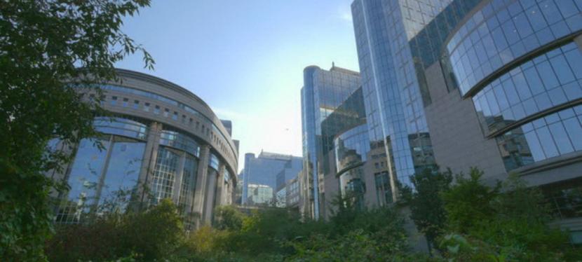 Процедура важлива: чим відрізняється отримання дозволів в Україні таЄС