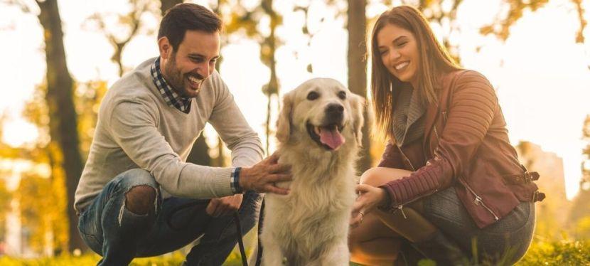 EU4Business допоміг виробнику товарів для домашніх тварин із Чернігова збільшити виробництвовдвічі